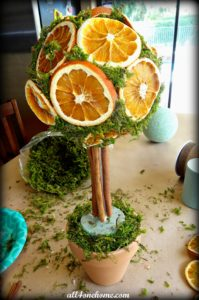 diy-orange-topiaries-4